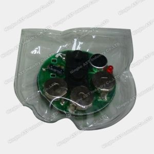 Waterproof Recordable Sound Module, Sound Module pictures & photos