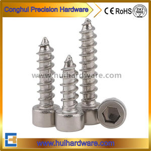Stainless Steel Hex Socket Cap Head Self Tapping Screws pictures & photos