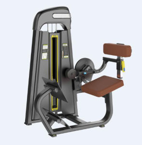 2015 Newest Fitness Equipment Back Extension (SD1016) pictures & photos