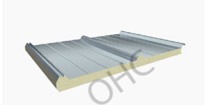 Roof Sandwich Panel pictures & photos