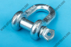 U. S. Screw Pin Type Shackle of Rigging Hardware Drop Forged pictures & photos
