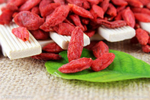 Dried Goji Berry Super Fruit From Ningxia, China pictures & photos