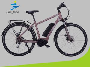 "Electric Bicycle with 700c Tyre 28"" pictures & photos"
