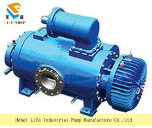 Series 2W. W Twin Screw Pump pictures & photos