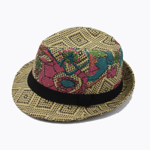 Painting Fedora Straw Hat (GK15-S1062) pictures & photos