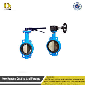 Customized High Quality Butterfly Valve Parts pictures & photos