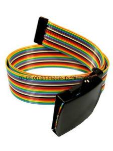 Fashion Bride Belt (YX-L0035)