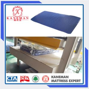 Cheap Price Jail Foam Mattress Waterproof Mattress pictures & photos