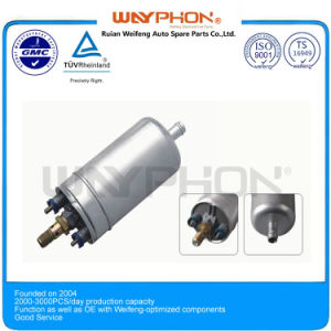 Electric Fuel Pump for BMW 0580254957 with Wf-6002 pictures & photos