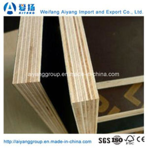 Two Times Pressing 20mm Shuttering Plywood pictures & photos