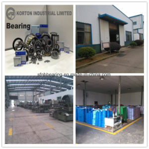 SKF NTN Timken Rolling Machine Bearing Suppliers Cylindrical Roller Bearing Nu206e pictures & photos