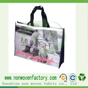 Eco-Friendly PP Non Woven Shopping Bags pictures & photos