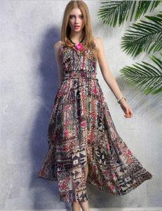 2015 Hottest Bohemia Chiffon Slim Fit Floral Maxi Dress pictures & photos