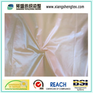 Nylon Taffeta Fabric with Calendering for Sport Wear pictures & photos