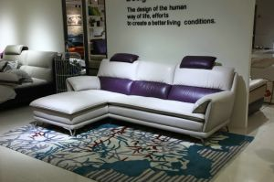Lizz Furniture 2016 New Design Couch pictures & photos