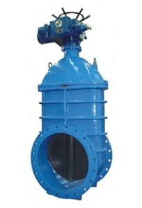 Big Size Resilient Soft Seated Gate Valve pictures & photos