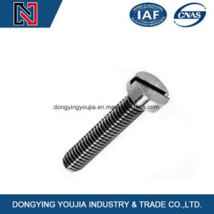 Cross Recessed Cheese Head Machine Screw pictures & photos