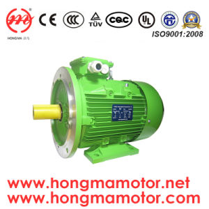 Ie2 Aluminum Housing Three Phase Asynchronous Motor pictures & photos