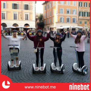 Ninebot Mini Electric Chariot Scooter pictures & photos