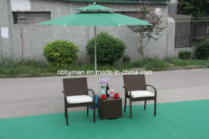 Rattan Chair (FSS-1633)