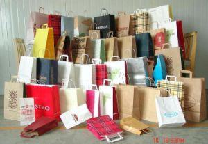 Paper Bag/ Shopping Bag /Kraft Gift Bag pictures & photos