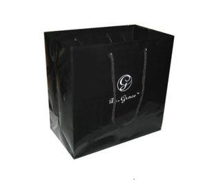 Printed Paper Bags (UN81)