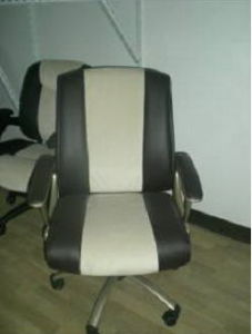 Office Chair (10919-02)