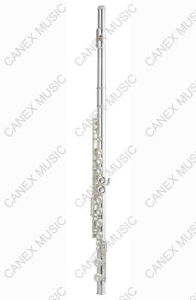 Flute 16 Holes/Nickle Plated Flute (FL-165N) pictures & photos