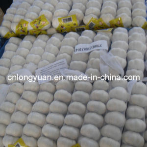High Quality Chinese Fresh Pure White Garlic pictures & photos