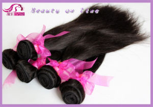 Straight Chinese Hair, Remy Human Hair Weft, Siky Straight (BHF-04) pictures & photos