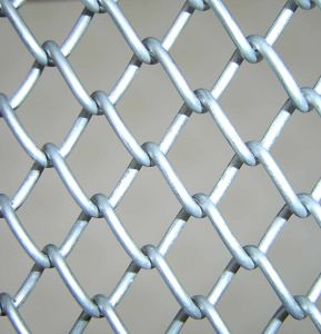 Chain Link Fence Mesh (TYH-044) pictures & photos