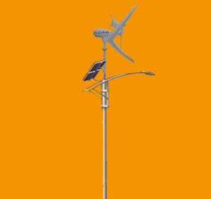 China Nheolis Wind Solar Hybird System Street Light Road