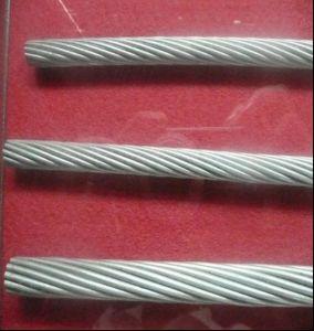 Galvanized Steel Strand - 5