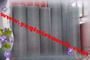 Hot Sale! Yaqi Factory on Welded Wire Mesh Gabion pictures & photos