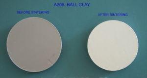 A208- Ball Clay