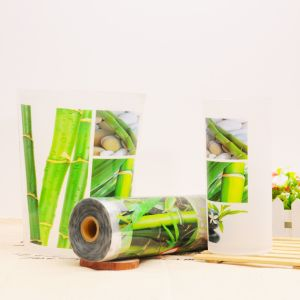 Heat Transfer Printing Film for Bucket pictures & photos