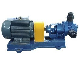 CE Approved Cast Iron Material NYP7.0A Internal Gear Pump pictures & photos