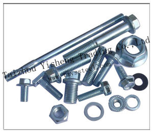 Stainless Steel Fasteners Bolt and Nut