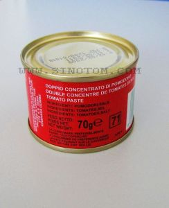 China Tomato Paste Factory Exporting 70g Normal Open Canned Tinned Tomato Paste