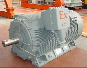 YB2 High-Voltage Explosion-Proof Induction Motor