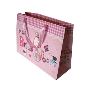 Lovely Paper Shopping Bag (FP7018) pictures & photos