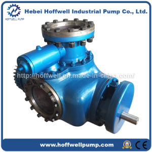 W. V Multi-phase Heavy Oil Double Screw Pump pictures & photos