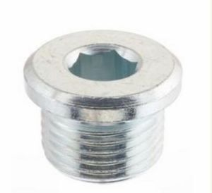 Blanking Plug Threaded ISO 1179