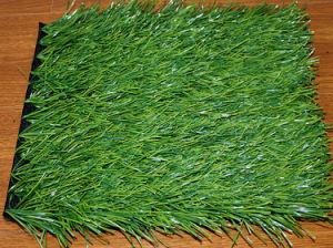 Monofilament PE Artificial Grass pictures & photos