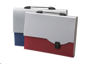 File Folder, Colorful Expanding File, Expanding File Holder (FY-807B)