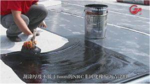 Single Component Polyurethane (PU) Waterproof Coating pictures & photos