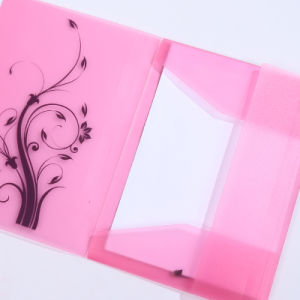 2016 transparent clear file holders A4 frosted PP document file holders pictures & photos
