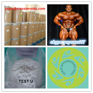 Top Quality Health Care Steroid Powder Testosterone Undecylenate pictures & photos