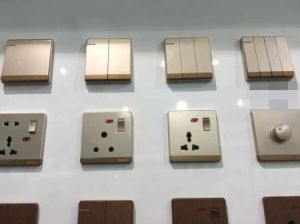 Luxury Champagne Color BS 13A Switched Socket Electrical Switch pictures & photos