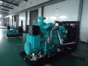 250kw LPG Power Generator Sets pictures & photos